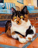 Custom cat portrait painting by Connie Bowen of Jaxy, a beautiful Calico cat. Calico cats are one of my favorites! They have such interesting markings.