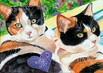 Sydney and Aprilee- Calico Cats - Kitty Love