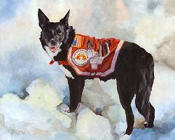 Dog Painting by Connie Bowen of Search and Rescue dog Valorie. She was an extremely talented and brave Border Collie SAR dog!