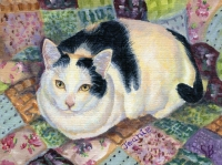 Custom cat portrait painting by Connie Bowen of Jeanie, a black and white cat who lives in Canada